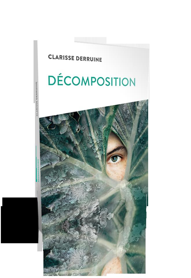 Décomposition - Clarisse Derruine
